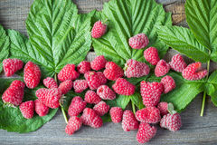 Raspberry with leaves on old wooden plank.  Stock Photo