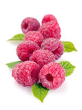 Raspberry with leaves Royalty Free Stock Photos