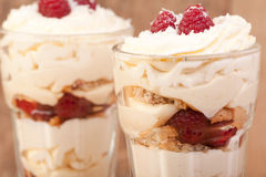 Raspberry, lemon and coconut desert Stock Image
