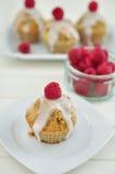 Raspberry Lemon Cupcakes Stock Photography