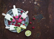 Raspberry lime yougurt ice-creams or popsicles Royalty Free Stock Photos