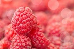 Raspberry, macro. Close up of a fresh raspberry, bokeh Stock Photo