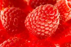 Raspberry macro. Closeup vivid macro Stock Photo