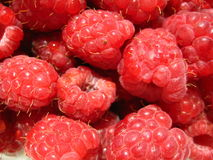 Raspberry  macro. Red berries, raspberries macro Stock Image