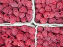 Raspberry market organic Royalty Free Stock Images