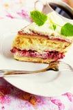 Raspberry meringue cake Royalty Free Stock Images