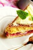 Raspberry meringue cake Stock Images