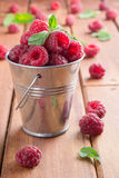 Raspberry and mint. In a bucket Royalty Free Stock Photo