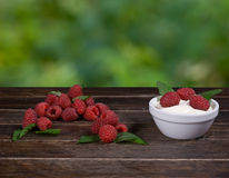 Raspberry, Mint and Cream Royalty Free Stock Image
