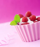 Raspberry and mint on ice-cream Stock Image