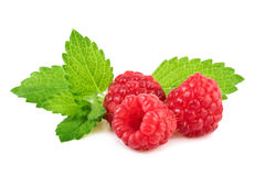Raspberry with mint leaf closeup Stock Photo