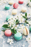 Raspberry, minty and vanilla macaroons and white flowers. Mix of raspberry, minty and vanilla macaroons decorated with spring cherry flowers Royalty Free Stock Image