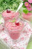 Raspberry mousse decorated with mint, fresh raspberries. Raspberry mousse decorated with mint and fresh raspberries in glass sundae dish Stock Images