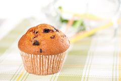 Raspberry Muffin Royalty Free Stock Photography
