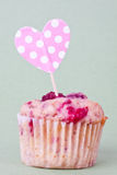Raspberry muffin Royalty Free Stock Photos