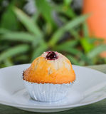 Raspberry muffin Stock Photography
