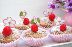 Raspberry muffins with cinamon crumble Stock Images