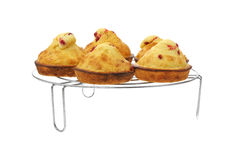 Raspberry Muffins on Cooling Rack Stock Image