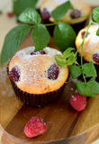 Raspberry muffins Stock Photos