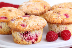 Raspberry Muffins and Fruit Royalty Free Stock Photo
