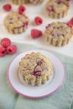 Raspberry Muffins Stock Photography