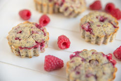 Raspberry Muffins. Home made Raspberry Muffins with poppy seeds Stock Photography