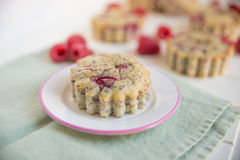 Raspberry Muffins. Home made Raspberry Muffins with poppy seeds Royalty Free Stock Photo