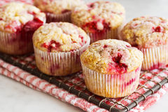 Raspberry Muffins On Cooling Rack Stock Images