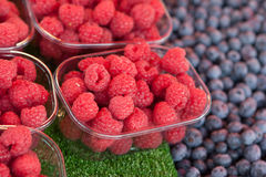 Raspberry. Near blueberry on the street market Stock Image