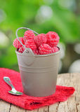 Raspberry on old wood Stock Images