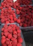Raspberry. Organic raspberries in plastic bowl on a farmer's market. Raspberries background. Fresh berries texture. Raspberry. Organic raspberries in Stock Image