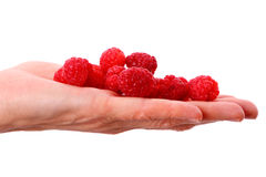 Raspberry on a palm Stock Image