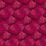 Raspberry pattern Royalty Free Stock Photo