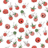 Raspberry pattern Stock Photography