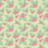 Raspberry pattern. Seamless pattern with raspberries and leaves, vector background Royalty Free Stock Photo