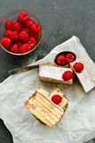 Raspberry pie. Healthy eating, food, dieting - pie  with  fresh raspberry soft cheese and  icing sugar, on   black background Stock Photos
