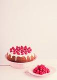 Raspberry pie and raspberry. Royalty Free Stock Photo
