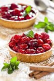 Raspberry Pies Close Up. Photograph of two freshly made raspberry pies Royalty Free Stock Photography
