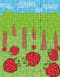 Raspberry puzzle pattern Stock Image