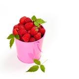 Raspberry Stock Images