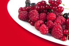 Raspberry red Stock Photo