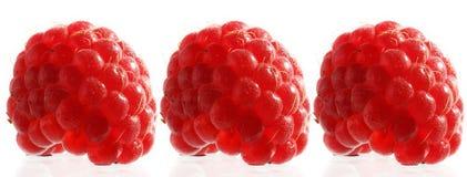 raspberry red Στοκ φωτογραφίες με δικαίωμα ελεύθερης χρήσης