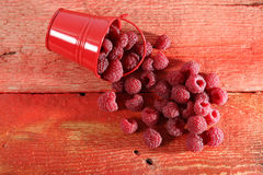 Raspberry in a red bucket. Raspberries in a small red bucket, a wooden table Royalty Free Stock Photography