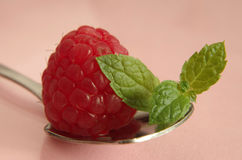 Raspberry. A red raspberry in close up with a fork Stock Images