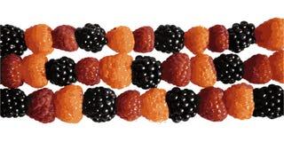 Raspberry vector illustration
