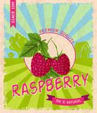 Raspberry retro poster Stock Photos