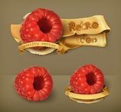 Raspberry retro vector icons Stock Images