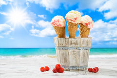 Raspberry Ripple Icecreams Royalty Free Stock Images