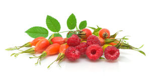 Raspberry and rosehip berries on a white Royalty Free Stock Photo