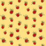 Raspberry seamless pattern. Hand drawn raspberry seamless pattern. Bright ripe berries background Royalty Free Stock Images